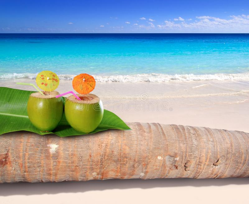 Coconut cocktail in turquoise Caribbean beach stock photos