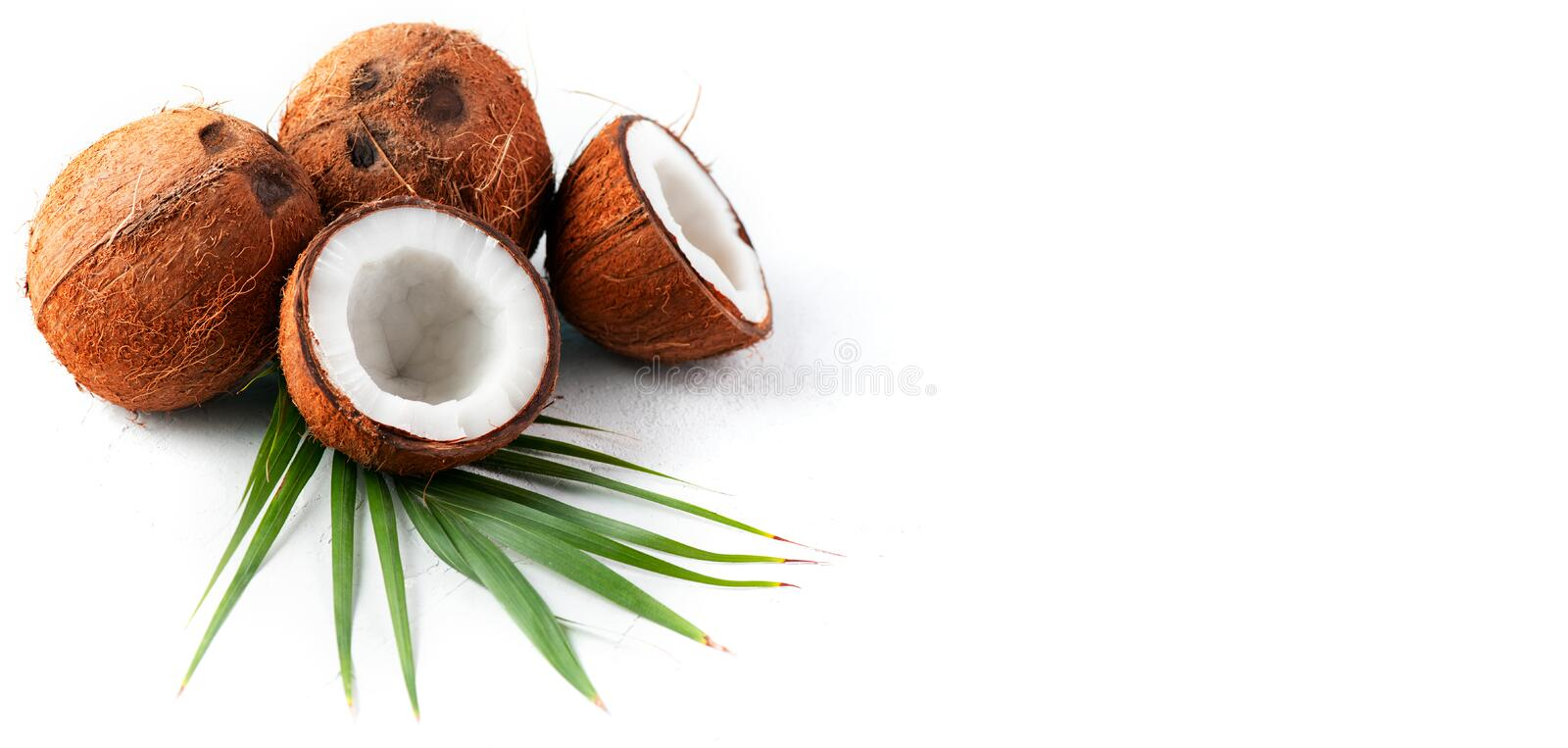 Coconut with coconuts palm tree leaf isolated on a white background. Fresh coco nut. Healthy food, skin care concept. Vegan food royalty free stock photo