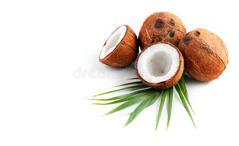 Coconut with coconuts palm tree leaf isolated on a white background. Fresh coco nut. Healthy food, skin care concept. Vegan food stock image