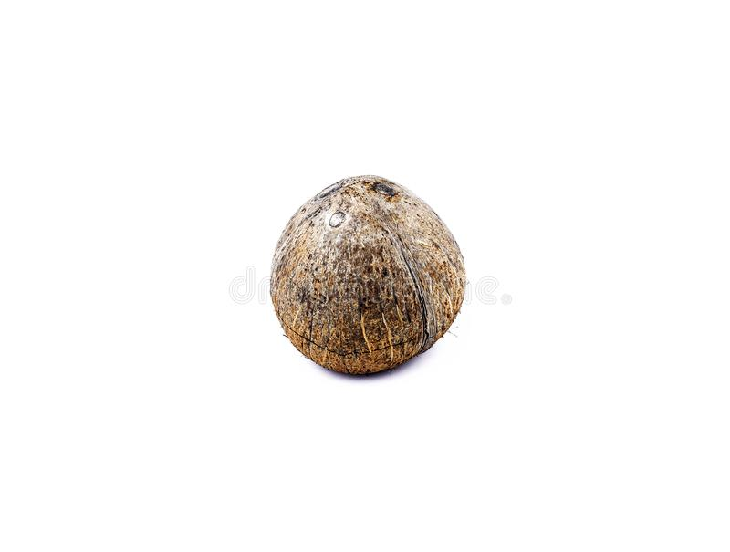 Coconut Isolated on White. royalty free stock photo