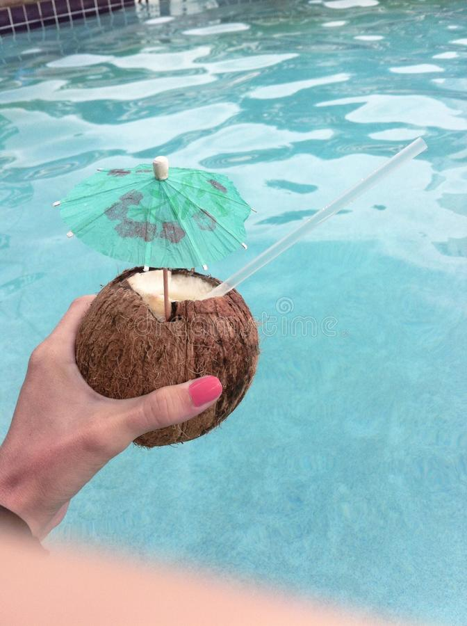 Coconut delight adult beverage stock photography