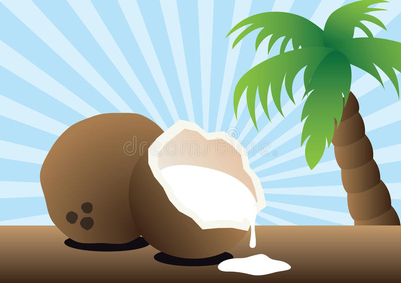 Download Coconut Drink Royalty Free Stock Photo - Image: 10177715