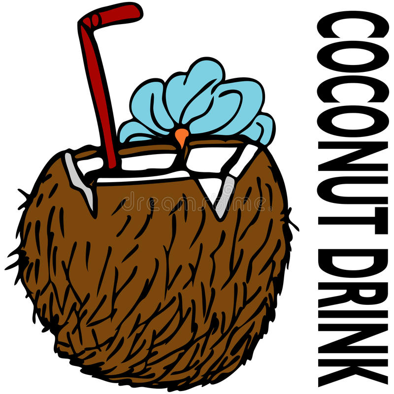 Download Coconut Drink stock vector. Image of fruit, drink, text - 16671362