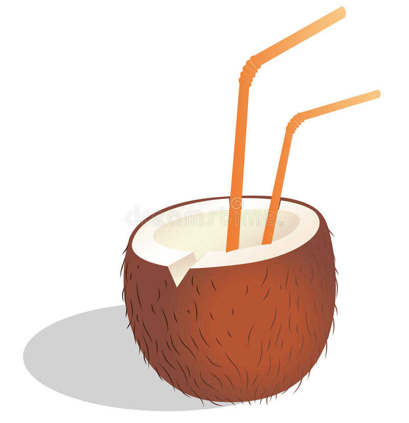 Download Coconut drink stock vector. Illustration of coconut, drunk - 22130399