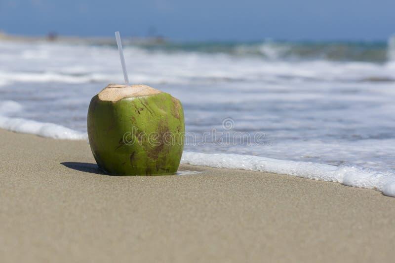 Coconut drink on the beach stock photos