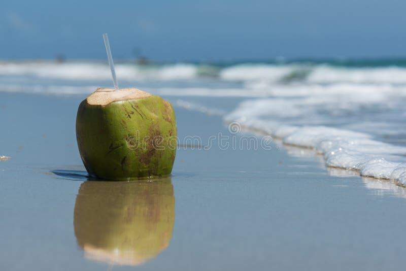 Coconut drink on the beach royalty free stock photos