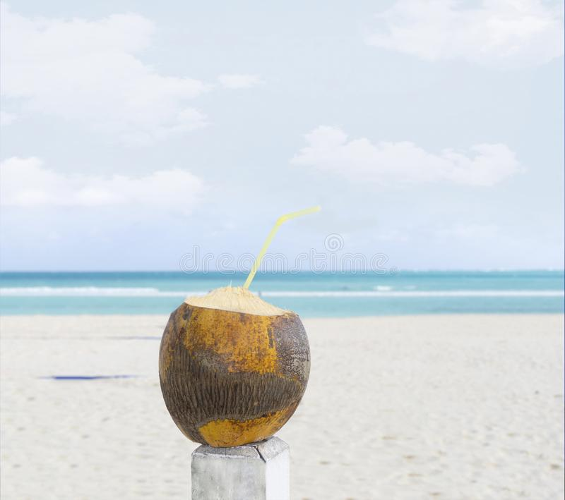 Coconut drink with a straw on a sandy beach. Coconut juice on the tropical seashore. White sand beach relax royalty free stock photography