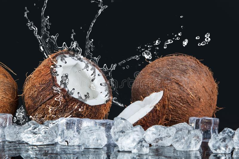Coconut with ice cubes stock photos