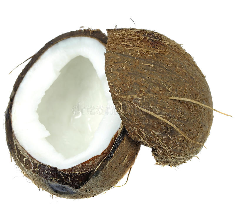 Download Coconut stock image. Image of still, intake, colour, indoor - 30469765