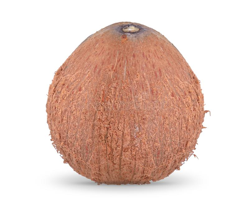 Coconut on white background, with clipping path stock image