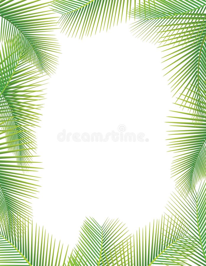 Download Coconut Leaf stock vector. Image of island, beauty, environment - 23607515