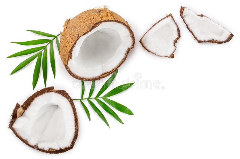 Coconut with leaves isolated on white background with copy space for your text. Top view. Flat lay.  stock illustration