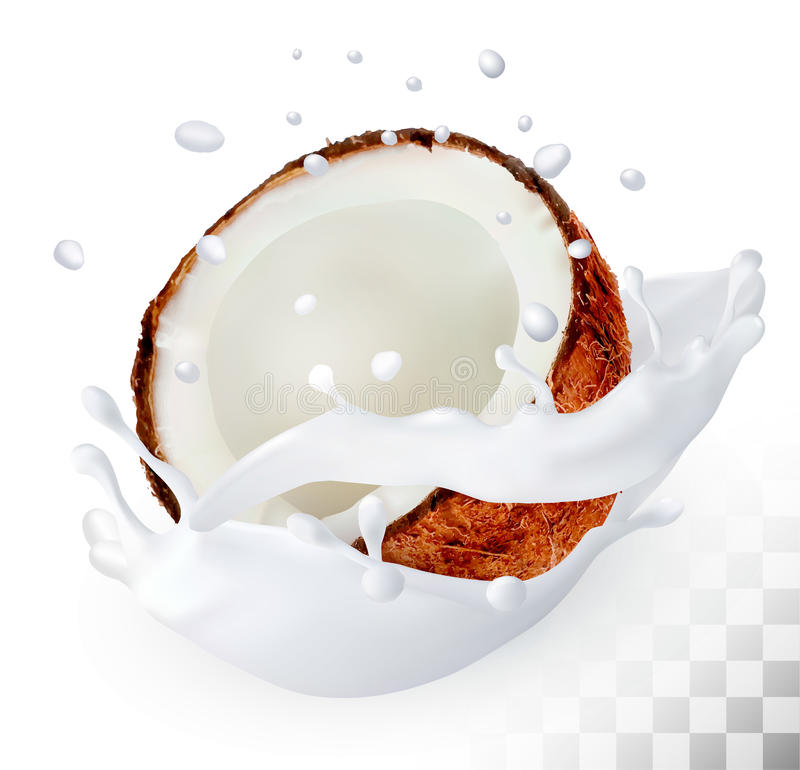 Coconut in a milk splash on a transparent background. Vector royalty free illustration
