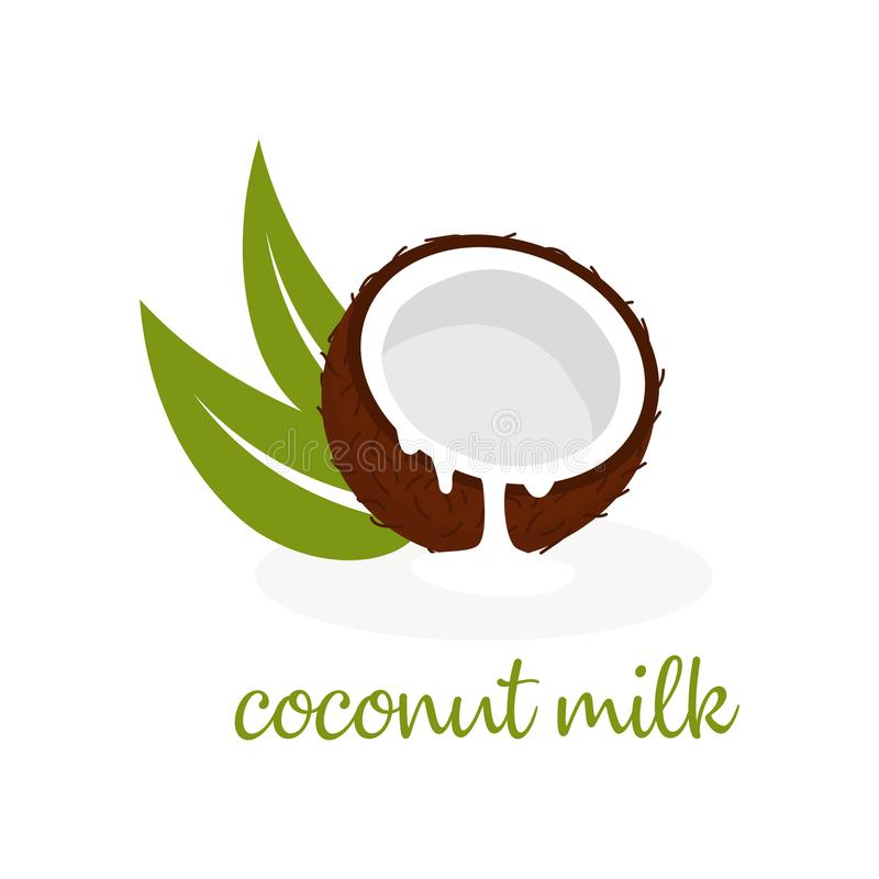 Coconut milk on white. Banner with coconut and coconut milk, leaves and text, wallpaper with nuts, floral background with tasty and healthy food vector illustration
