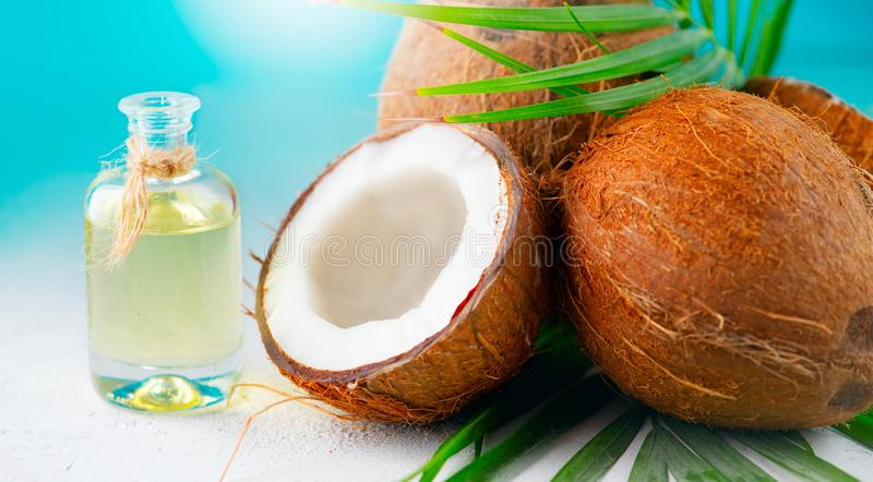 Coconut oil in a bottle with coconuts and green palm tree leaf over blue. Healthy eating. Skincare royalty free stock photos