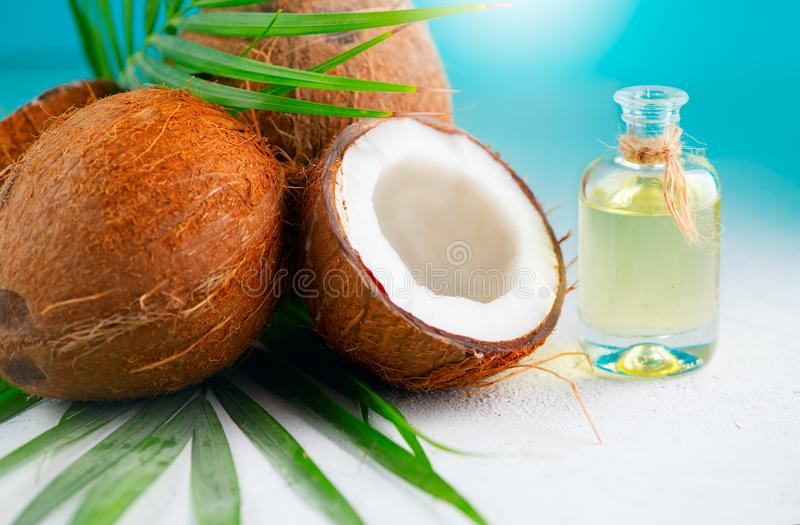 Coconut oil in a bottle with coconuts and green palm tree leaf over blue. Healthy eating. Skincare stock images