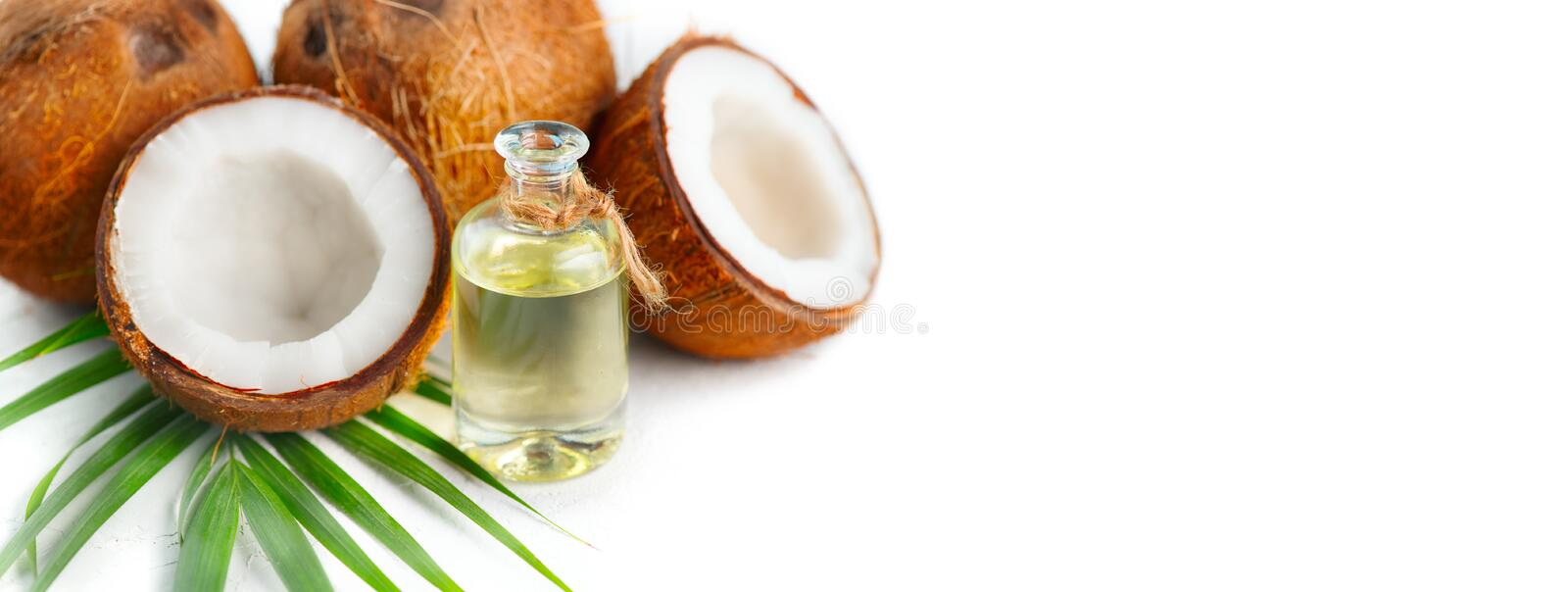 Coconut oil in a bottle with coconuts and green palm tree leaf on a white background. Skincare stock image
