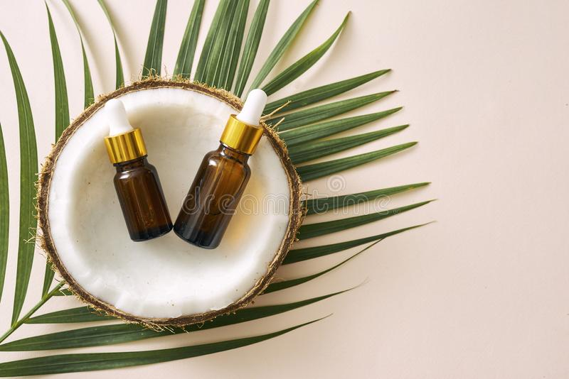 Coconut oil in bottle with open nuts and pulp in jar, green palm leaf background. Natural cosmetic products stock photo