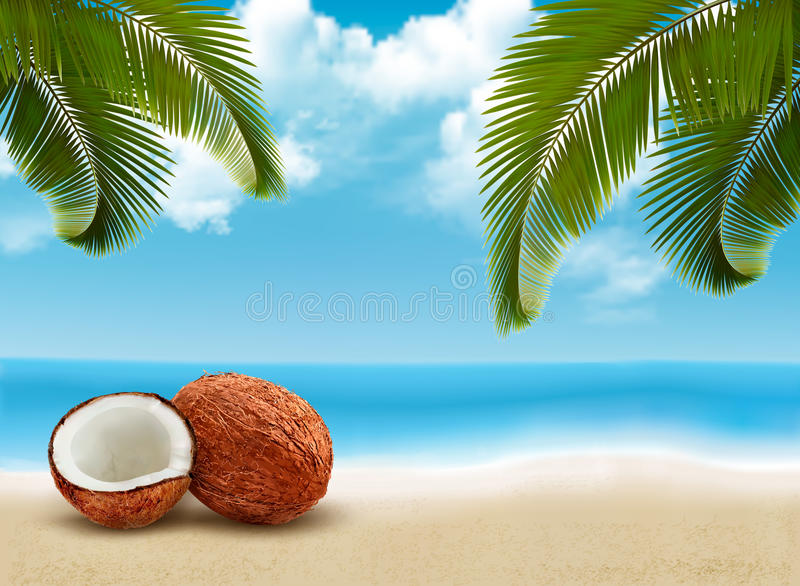 Coconut with palm leaves. Summer vacation background. vector illustration