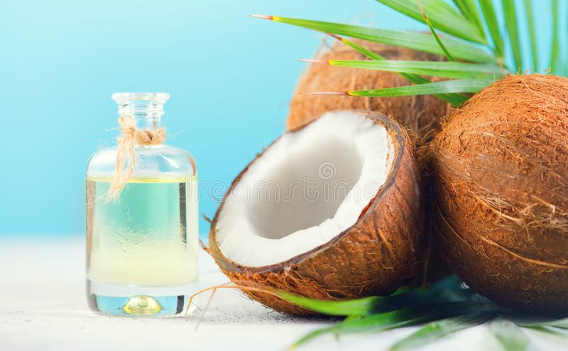 Coconut palm oil in a bottle with coconuts and green palm tree leaf on blue background. Coco nut closeup. Healthy food, skincare. Concept stock photos