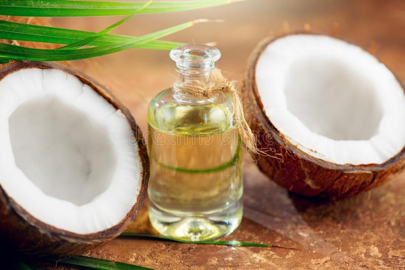 Coconut palm oil in a bottle with coconuts and green palm tree leaf on brown background. Coco nut closeup. Healthy food, skincare royalty free stock photography
