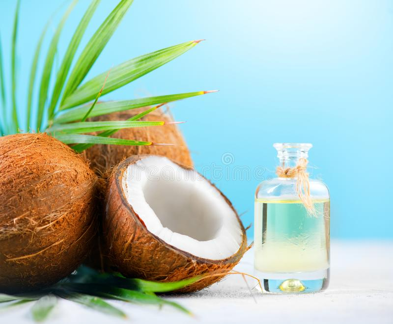 Coconut palm oil in a bottle with coconuts and green palm tree leaf on blue background. Coco nut closeup. Healthy food, skincare. Concept stock photography