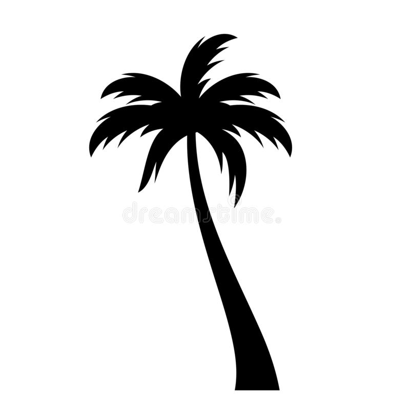 Coconut palm tree vector icon. On white background royalty free illustration
