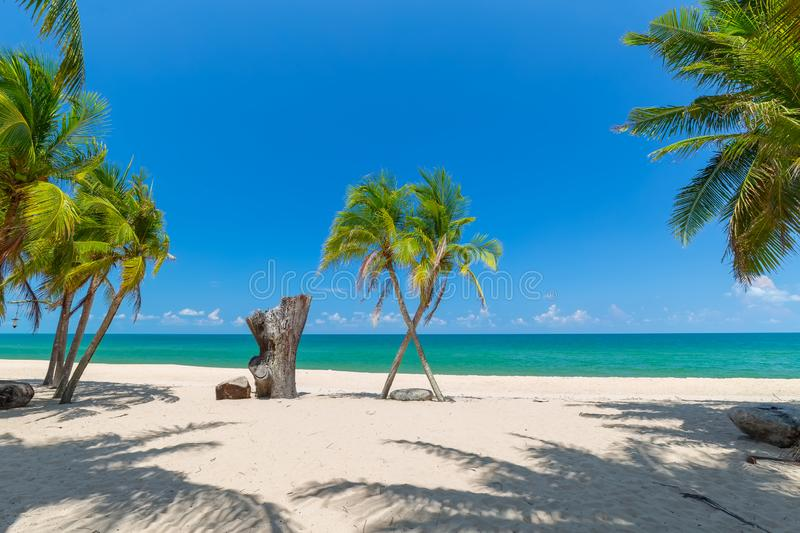 Coconut Palm trees on white sandy beach and  blue sky in south of Thailand royalty free stock images