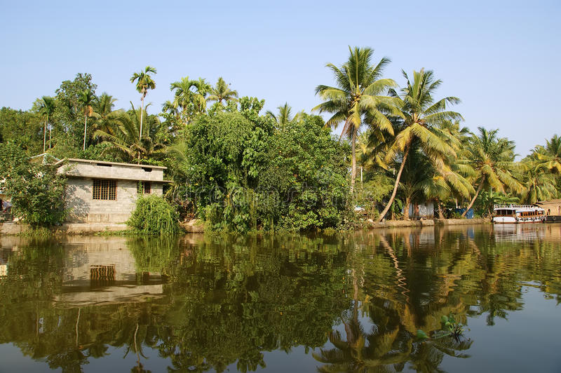 Download Coconut Palms On The Shore Of The Lake. India Stock Photo - Image: 21782054