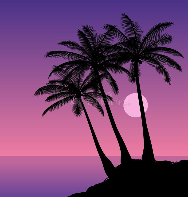 Coconut palms. Silhouettes of palm trees against the night sky. Vector illustration vector illustration