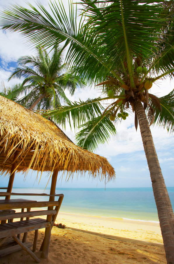 Download Coconut Roof Stock Image - Image: 2300051