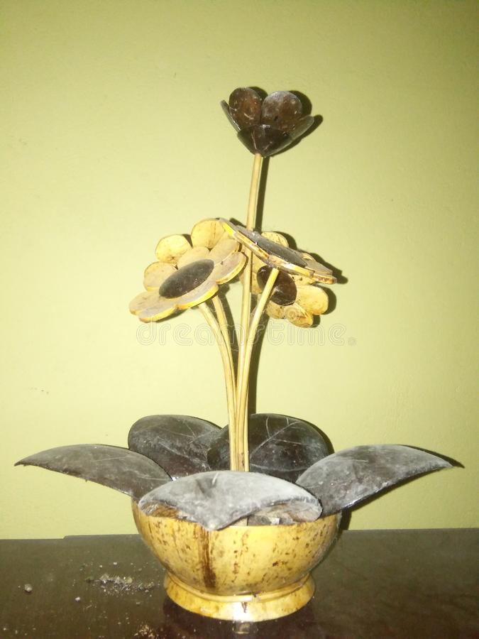 Coconut shell images stock