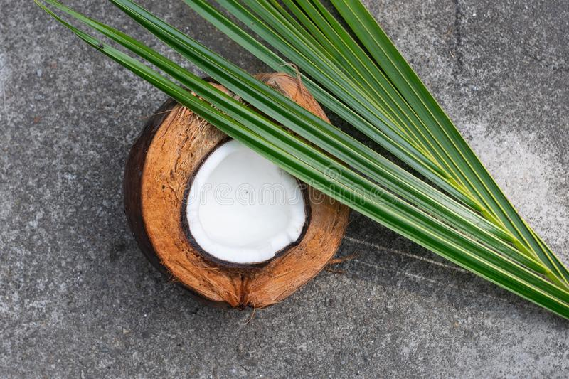 Coconut, coconut shell, coconut leaf, front corner stock photos