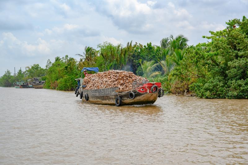 Wooden boat filled to capacity with coconut shells on distributary of Mekong Delta, Vietnam. Coconut shells transporting for utilization over side arm of Mekong stock images