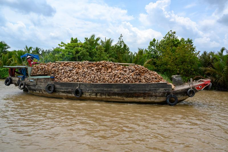 Wooden boat filled to capacity with coconut shells on distributary of Mekong Delta, Vietnam. Coconut shells transporting for utilization over side arm of Mekong stock photography