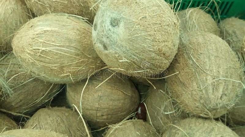Coconut, close-up, background royalty free stock photo