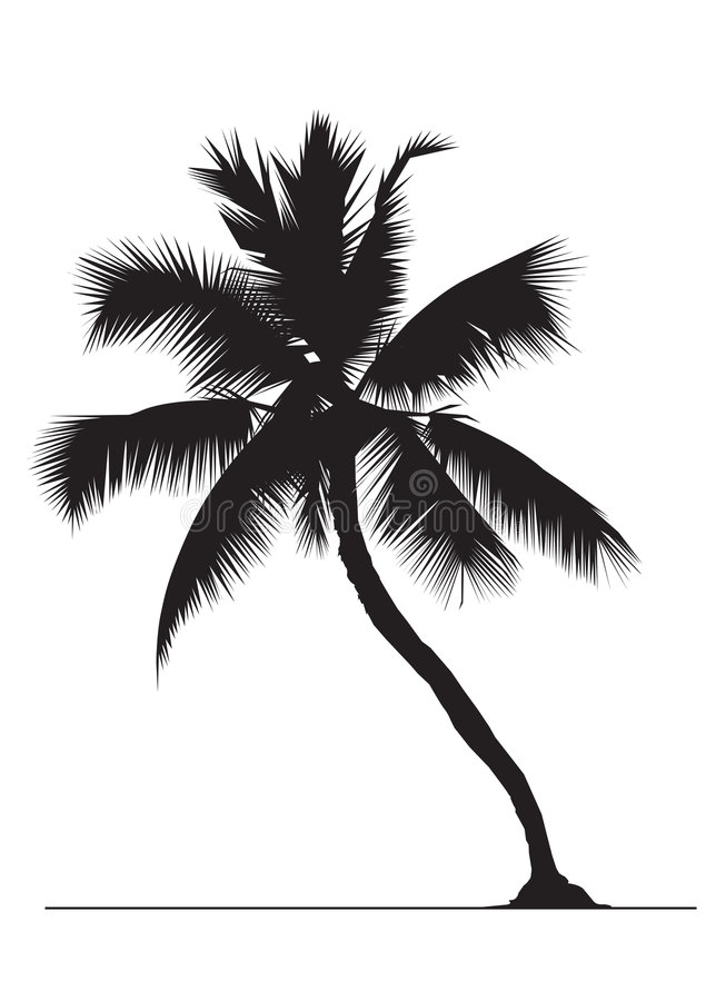 Free Coconut Tree Royalty Free Stock Photo - 352625