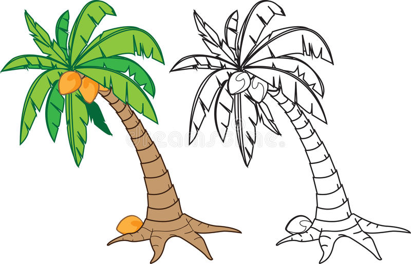 Coconut tree stock vector. Illustration of warm, drawing - 31634628