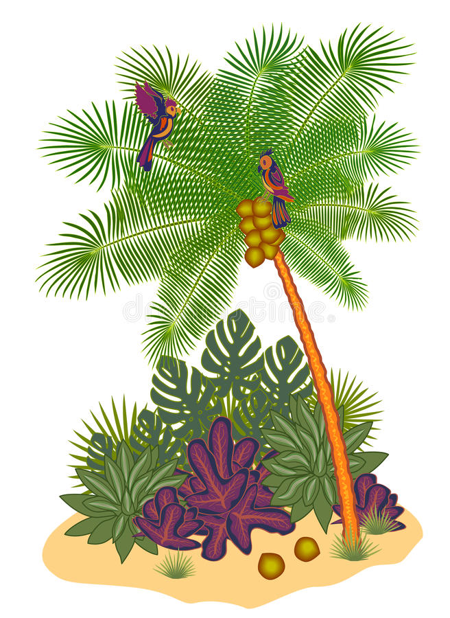 Coconut tree. With parrots and plants royalty free illustration