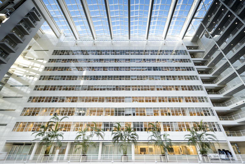 Coconut tree in the Ice Palace. Den Haag town inner offices, ultra modern building at The Hague, Netherlands royalty free stock photography