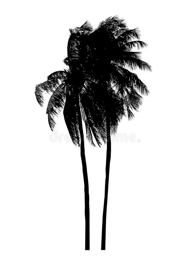 Coconut tree, isolated natural summer plant sign, vector illustration. Coconut trees that are blown, isolated natural summer plant sign, vector illustration stock illustration
