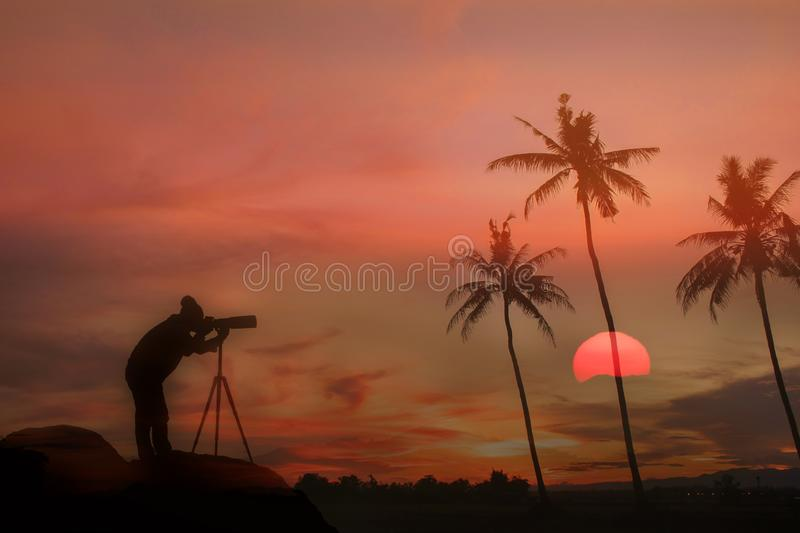 Coconut tree during sunset. Silhouetted of coconut tree during sunset asia background beach beautiful blue caribbean coast dusk evening exotic hawaii high stock image