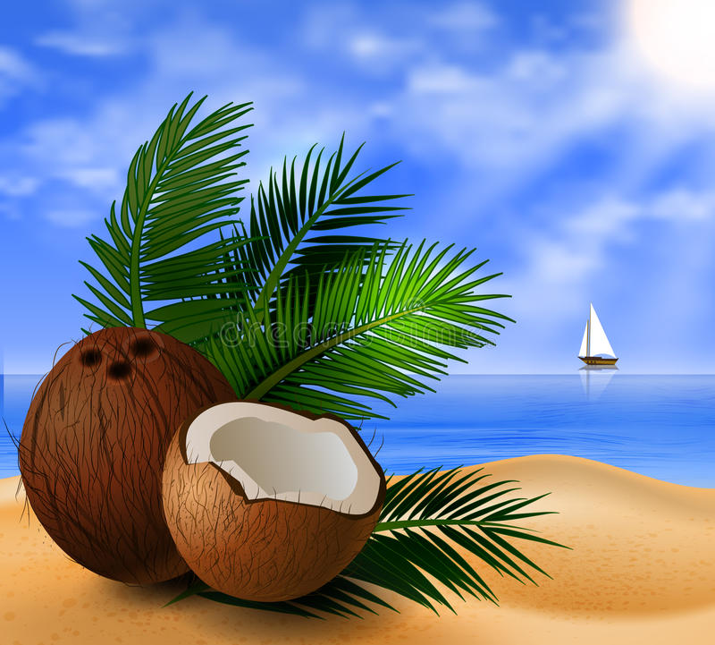 Coconut tropical nut fruit. With cut vector illustration on a beach background with tropical palm leaves and a boat stock illustration