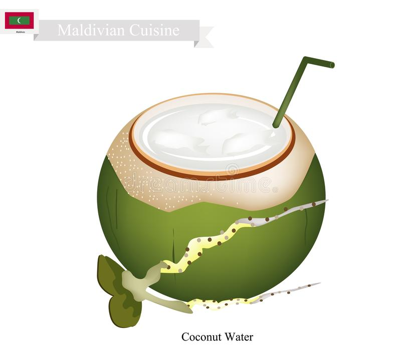 Coconut Water Drink, A Famous Beverage in Maldives royalty free illustration