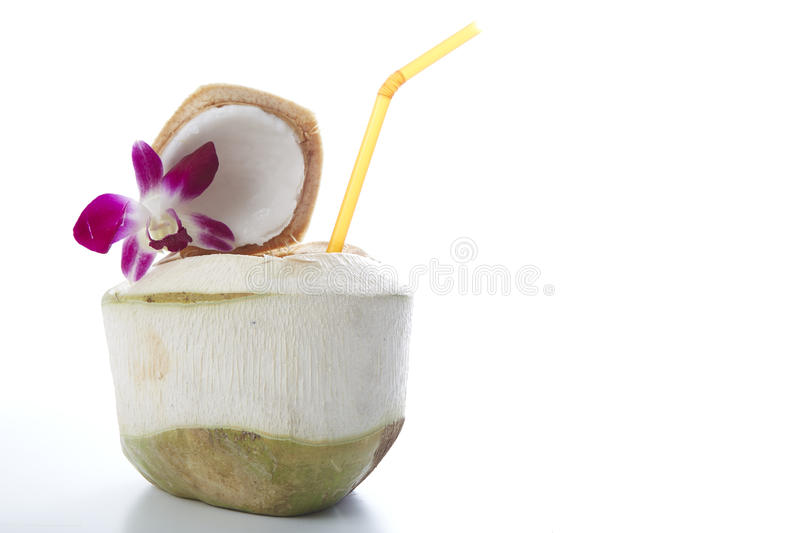 Coconut Water Drink royalty free stock images