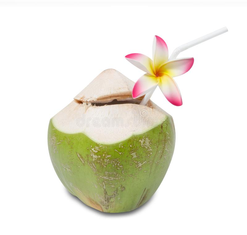 Coconut Water Drink with Straw and plumeria isolated on white background,clipping path royalty free stock photo