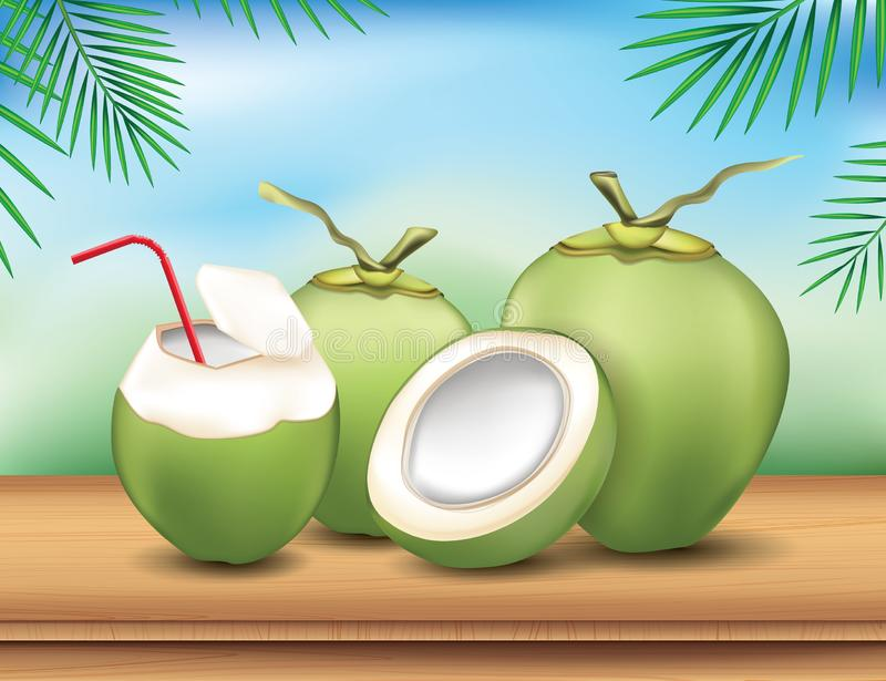 Coconut on wood table and nature background. Set of coconut royalty free illustration