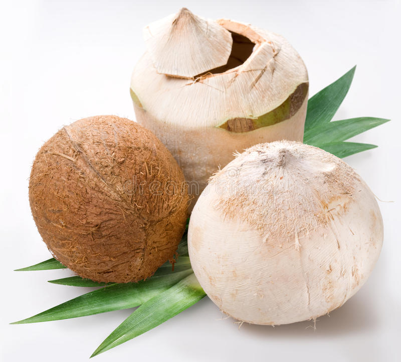 Download Coconuts stock image. Image of fresh, green, nutrition - 10350351