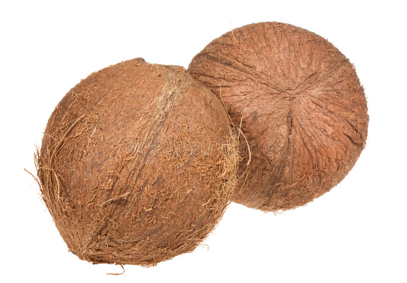 Download Coconuts stock image. Image of cooking, coco, pair, food - 12395569