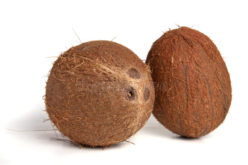Download Coconuts Royalty Free Stock Photo - Image: 13294195